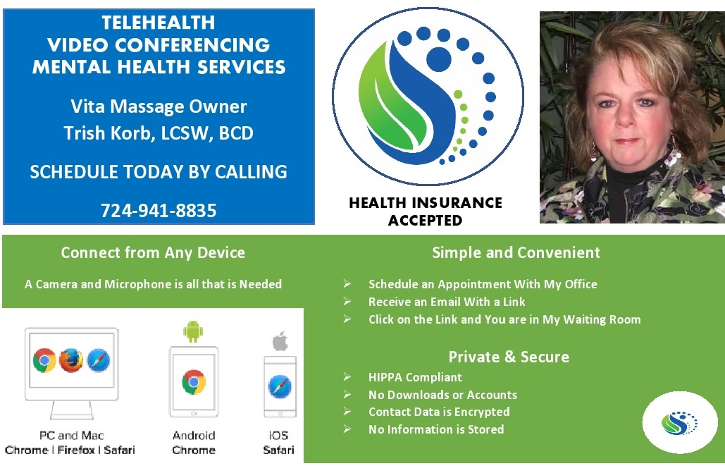 Telehealh Video Conferencing Mental Health Services